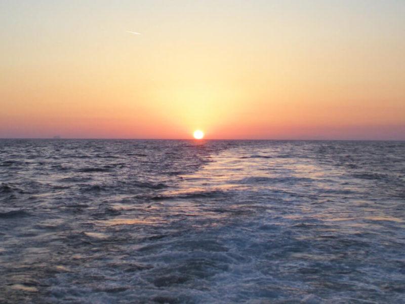 Heal Your Life on Board con Carla Millefiorini