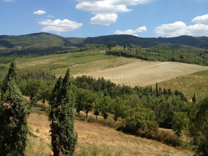 FREE in Toscana con Carla Millefiorini